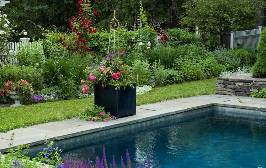 How to Make an Eco-Friendly Backyard