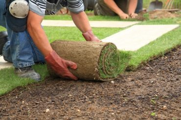 Everything One Must Know About Landscaping and Landscapers