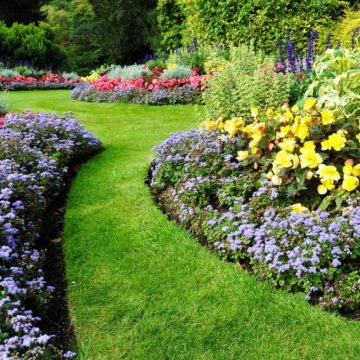 A Beginner's Guide to Landscaping Your Garden